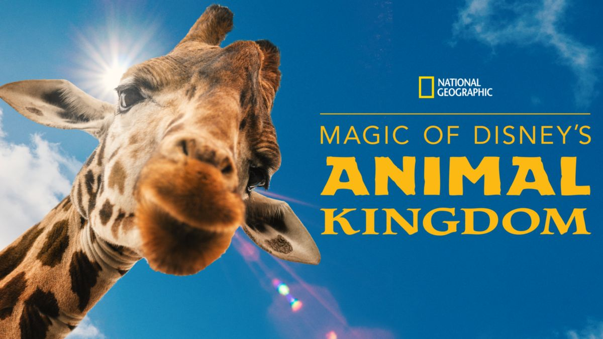 Magic of Disney's Animal Kingdom by National Geographic